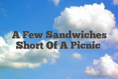 A Few Sandwiches Short Of A Picnic