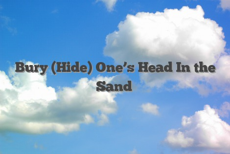 Bury (Hide) One's Head In the Sand