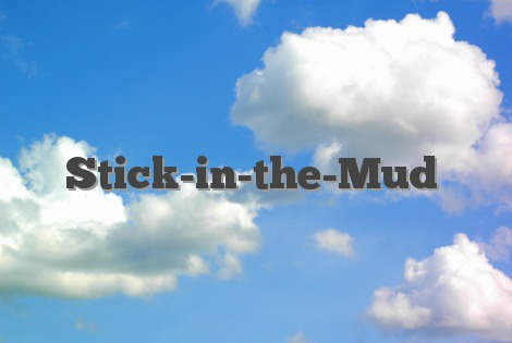 Stick-in-the-Mud