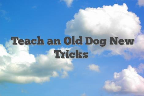 Teach an Old Dog New Tricks