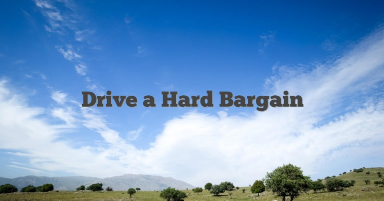 Drive a Hard Bargain