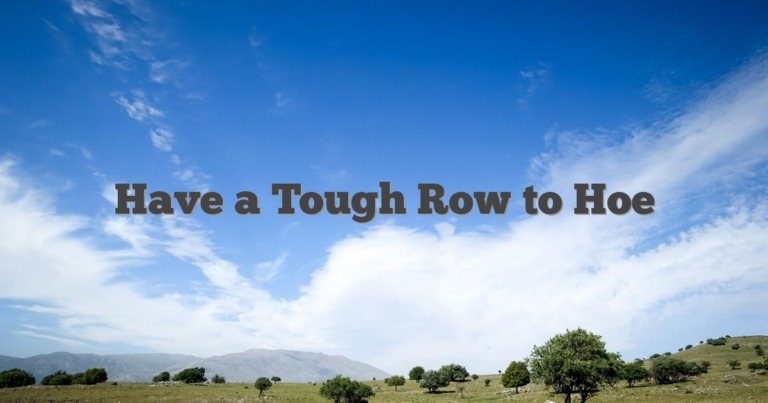 Have a Tough Row to Hoe