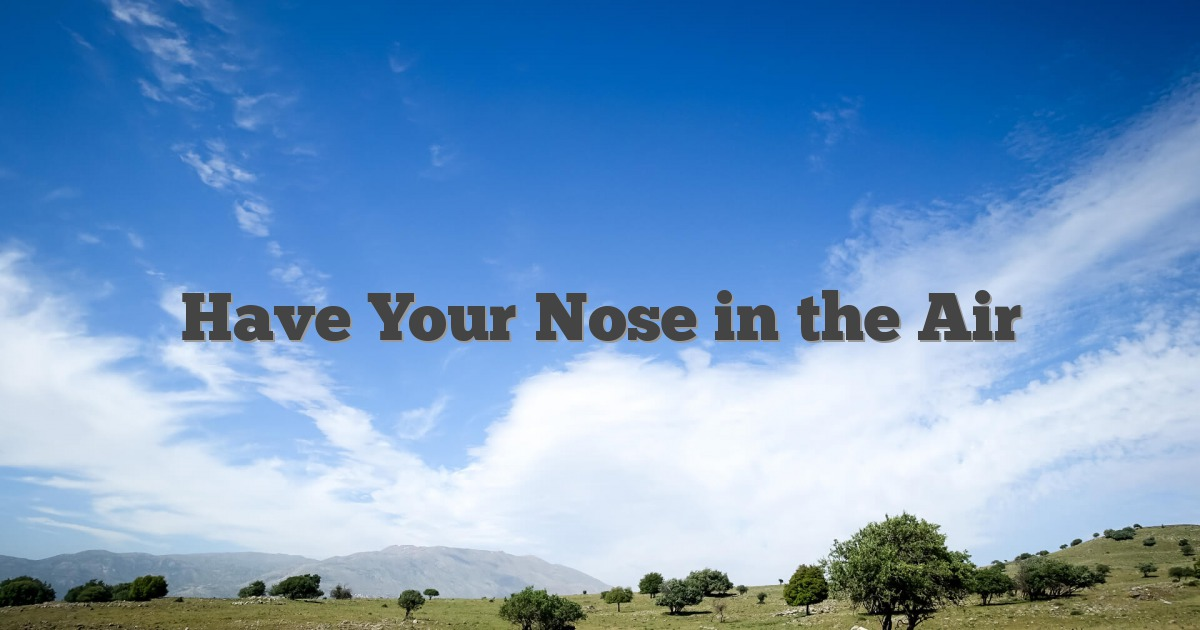 Have Your Nose in the Air