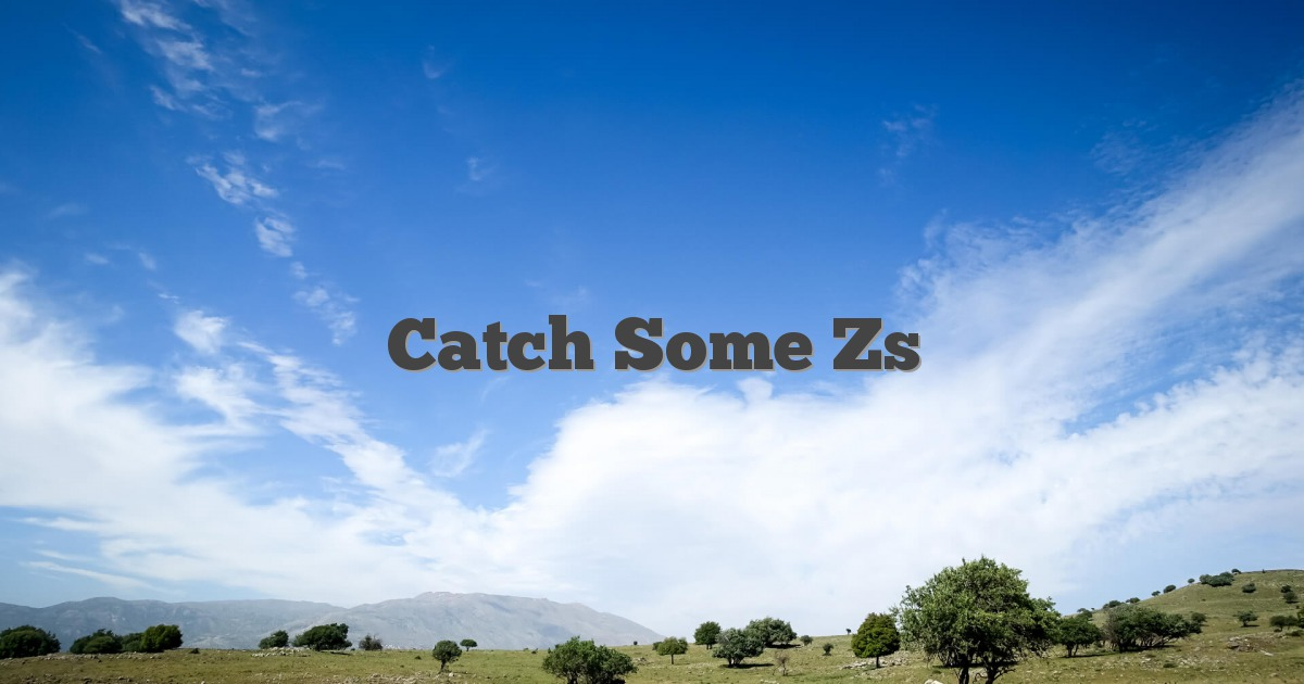 Catch Some Zs - English Idioms & Slang Dictionary