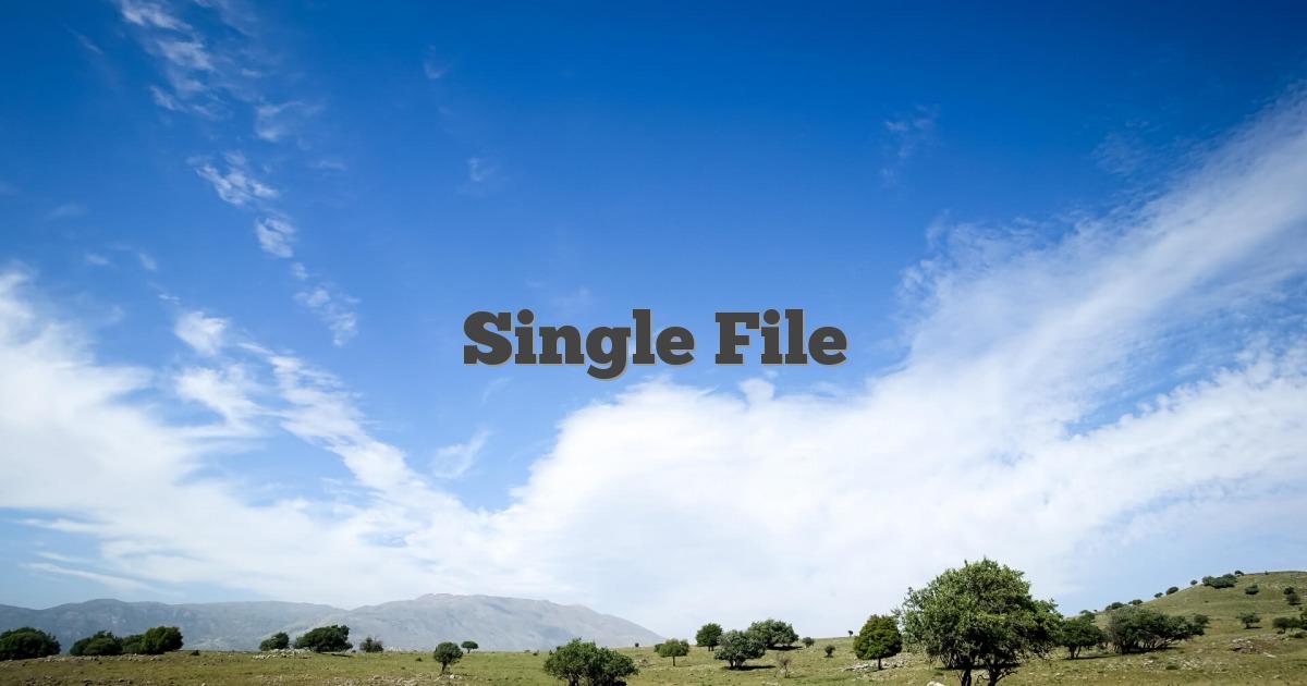 Single File