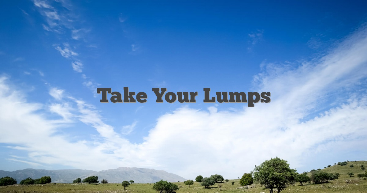 Take Your Lumps